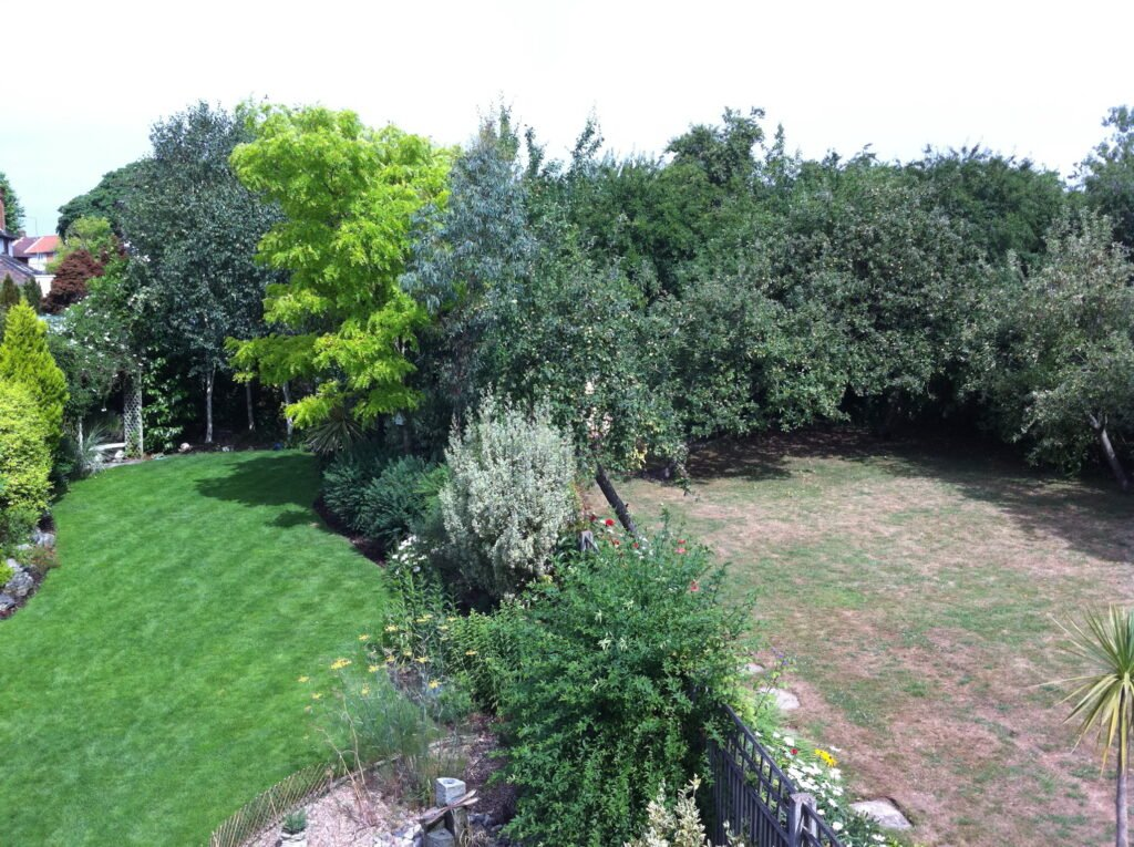 Full grass lawn and patchy lawn, JJO Fencing and Gardening Services Ltd, Fencing, Hedge Trimming, Fencing Suppliers, Fence Company, Grass Cutting, Warminster, Westbury, Frome