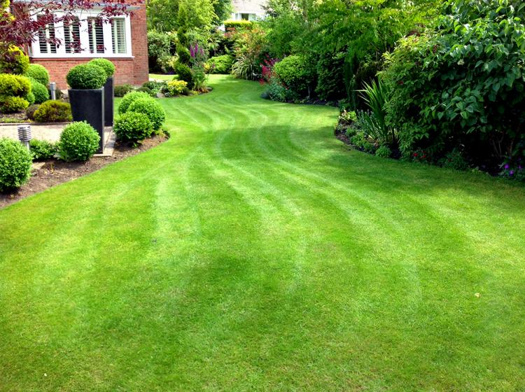 Freshly mowed lawn, JJO Fencing and Gardening Services Ltd, Fencing, Hedge Trimming, Fencing Suppliers, Fence Company, Grass Cutting, Warminster, Westbury, Frome